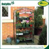 Invernadero del jardín transparente del PVC de la grada de Onlylife 4 mini
