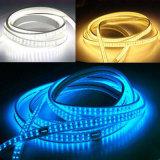 110V scaldano l'indicatore luminoso bianco della corda del LED per la decorazione