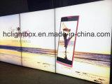 Double armature Lightbox d'affiche de lumière de textile de tissu de Frameless