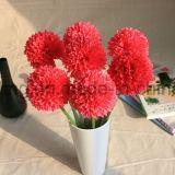 選抜しなさいホーム装飾(SW13301)のための破裂音のミイラの花を