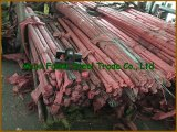 RoHS Certification를 가진 ASTM A479 316L Stainless Steel Bar