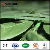 Panneaux en plastique verts matériels de frontière de sécurité de lame de PE décoratif pour le décor d'usager