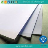 PVC de Sell 460X305 0.5mm d'usine Plate/Board/Sheet pour Card