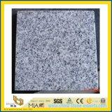 Azulejo del granito de China Juparana para la decoración del suelo