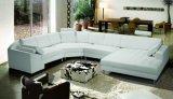 Insieme di successo del sofà del cuoio del salone di disegno moderno