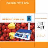 Scala di calcolo di prezzi elettronici di Digitahi con Palo