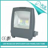 袋シリーズ2穂軸100W LEDのフラッドライト