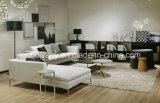 Muebles modernos del sofá del cuero de la sala de estar del estilo (D-71-C y D-71-H)