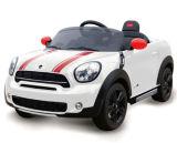 Миниый односельчанин ягнится электрическая езда на лицензированном автомобиле