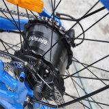 전기 조수 (RSEB-506)와 가진 뚱뚱한 타이어 바닷가 함 자전거