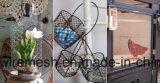 Engranzamento de fio da gaiola de galinha do vintage de Sailin para a cesta