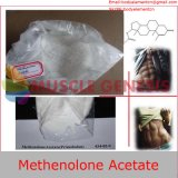 Alto acetato esteroide sin procesar Primonabol de Methenolone de la hormona de esteroides del ciclo del contenido que abulta el 99% CAS 434-05-9 Primobolan