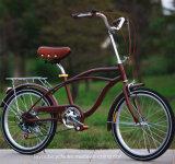 Горячая продавая повелительница Город Bike скорости углерода одиночная (ly-a-2)