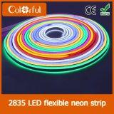 직업적인 도매 SMD2835 AC230V LED 네온 코드 지구 빛