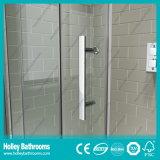 Pièce jointe coulissante de douche nette de rectangle avec le bâti d'alliage d'aluminium (SE906C)