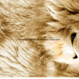 le modèle Pigment&Disperse du lion 100%Polyester a estampé le tissu pour le jeu de literie
