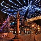 Luz ao ar livre da decoração da árvore de Plam da bandeira do Natal do diodo emissor de luz do baixo custo