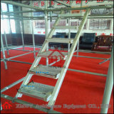 Skid Resistance stalk Scaffolding ladders with Hooks