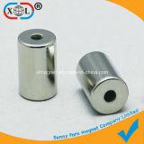 De ronde Magneet van het Gat van de Cilinder met SGS