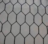 Сетка мелкоячеистой сетки/гальванизированная & PVC Coated шестиугольная ячеистая сеть