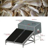 De Drogende Machine van vissen/de Drogere/Plantaardige Droger van Vissen