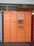 鋼鉄キャビネットの情報処理機能をもった小包のロッカー