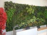 Mur vert décoratif d'art d'herbe artificielle neuve du modèle 2017