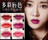 Afy blenden bunter die 6 Farben-Verfassungs-Lippenstift Farben-Lippenversuchung-Weiche-wohlen befeuchtenden Lippenstift