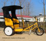 OEMのインドのタクシーのための実用的な電動機のPedicabの使用