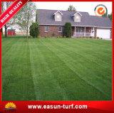 Multicolor искусственная трава для ландшафта и спортов