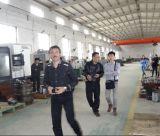 Tipo accoppiamento rigido della Cina Tanso Gcld dell'asta cilindrica di attrezzo