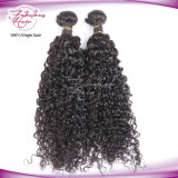 cabelo Curly do Weave do cabelo malaio do Virgin 8A