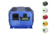 400W 600W 1000W HPS/CMH는 가벼운 디지털 밸러스트 제조자를 증가한다