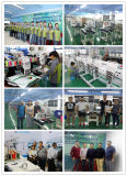 Computerisiert 2 Hauptschutzkappen-Stickerei-Maschinen-Preisen mit Schneidautomaten