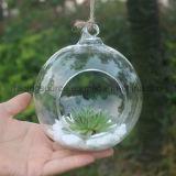 Украшение венчания Terrarium вазы цветка стойки Hydroponics вися стеклянное