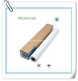 Rodillo de papel liso disponible