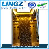 De gouden Lift van de Lift van het Huis van de Fabrikant van China van de Leverancier Hydraulische met Ce
