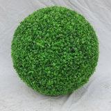 人工的なBoxwoodの球は球を植える