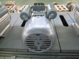 Yc 시리즈 Single-Phase 축전기 시작 비동시성 모터 Yc80b-2 0.75HP
