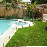 Cerca de cristal endurecida de la piscina con hardware del acero inoxidable
