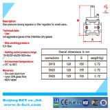 De Klep van de Regelgever van het Gas van de Aard van het aluminium zonder Maat BCTR03