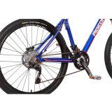 高い等級30の速度のマウンテンバイクのカメロン様式MTB (FP-MTB-A03)