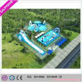 Het nieuwe Park van het Water van het Ontwerp Reuze Opblaasbare Bewegende van Lilytoys