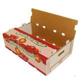 Caja de embalaje de cartón ondulado de la fruta