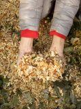 Broyeur à déchiqueteuse / déchiqueteuse à bois Loncy de 13HP Loncin pour travaux de jardin