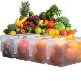 뚜껑 손잡이 (투명도)를 가진 독립적인 부엌 냉장고 음식 신선하 지키는 상자