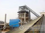Профессиональный транспортер минералов пояса Dtii большой емкости фикчированный