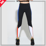 OEM Factory Custom Women Fitness Gym Clothing Wear