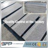 Pietra grigia naturale cinese popolare/Granitle G602&G603 Stairs/Step/Tread/Riser di pietra