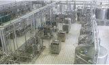 Полная строка нержавеющая сталь мороженного 1t/H